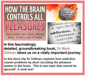 pleasure center of the brain, chemicals in the brain, pleasure