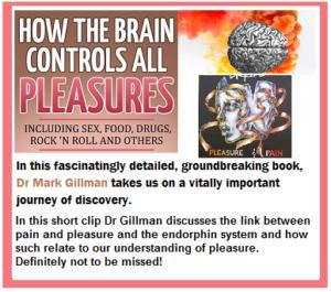 pleasure center of the brain